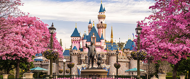 picture of Disneyland castle